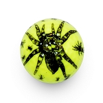 Spider Novelty Ball